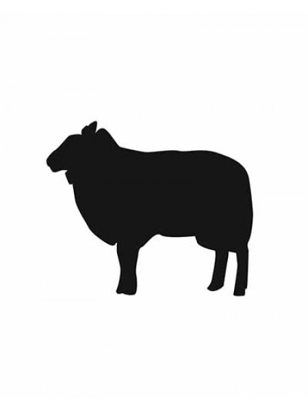 "Меловой ценник формата А6 ""Овца"""